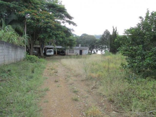 CHÁCARA PARA LOCAÇÃO NO COLONIA COM 15000M², DE FUNDO PARA A REPRESA BILLINGS - Foto 10