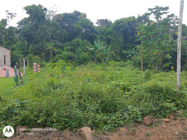 Vendo terreno em Belterra, Ótima localização - Foto 5