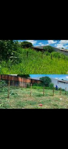 Serviços de jardinagem e pulverização - Foto 3