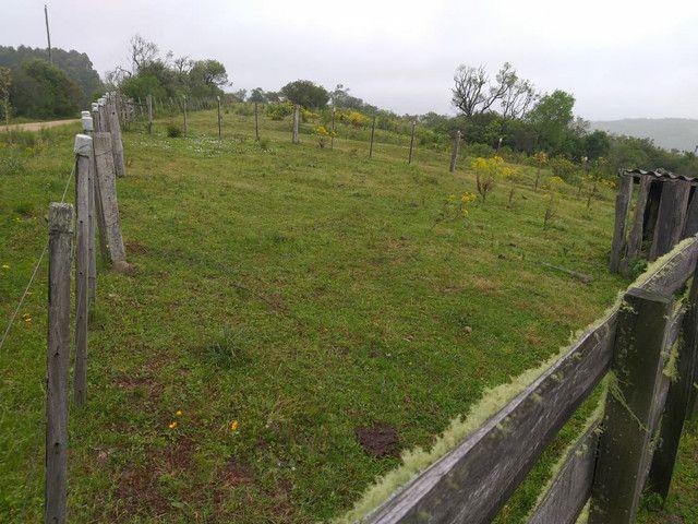 Chacara 14 hectares  - Foto 6