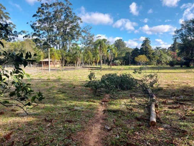 Velleda oferece B.A.R.B.A.D.A 2 hectares com cancha de futebol e frutíferas - Foto 9