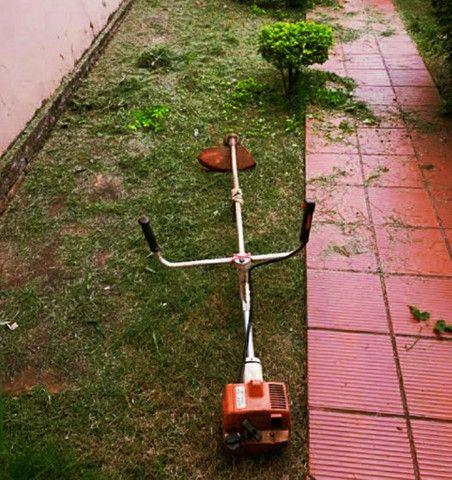 Serviços de jardinagem e pulverização - Foto 4