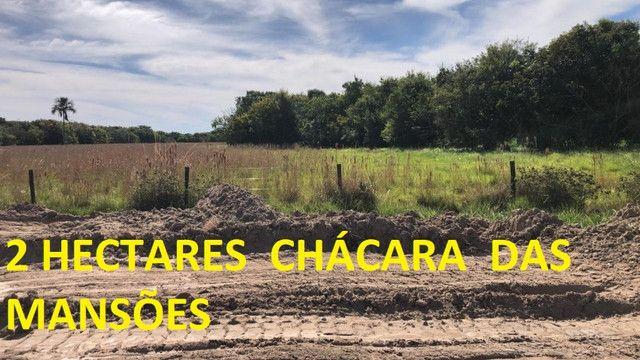 Oportunidade de Investimento Chácara das Mansões 2 Hectares - Foto 10