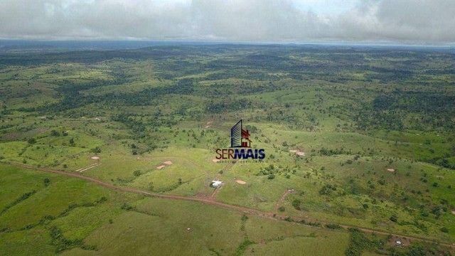 Fazenda com à venda, por R$ 14.000.000 - Centro - Alta Floresta D'Oeste/RO - Foto 9