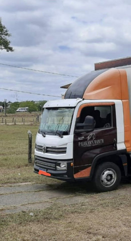 Caminhão 9,170  - Foto 4