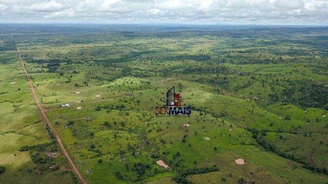 Fazenda com à venda, por R$ 14.000.000 - Centro - Alta Floresta D'Oeste/RO - Foto 7