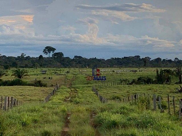 Fazenda à venda, por R$ 10.925.000 - Área Rural de Porto Velho - Porto Velho/RO - Foto 8