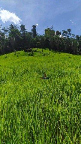 Sítio à venda, 508200 m² por R$ 670.000 - Zona Rural - Vale do Anari/RO - Foto 10