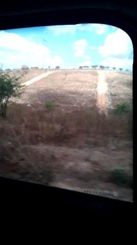 Terreno em bezerros  - Foto 2