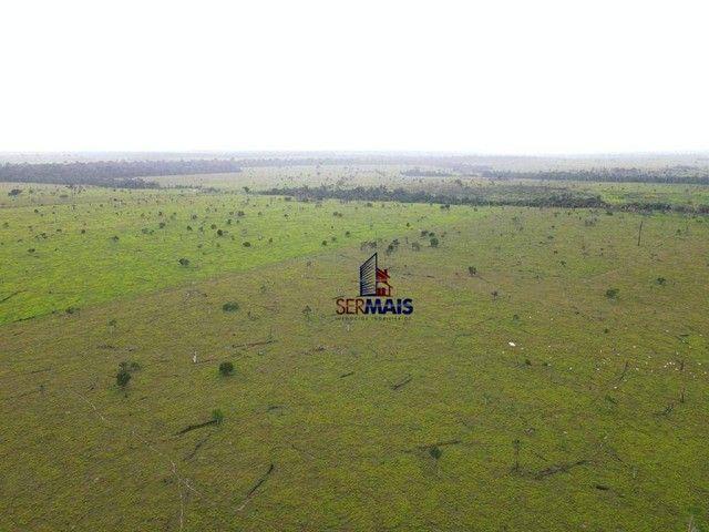 Fazenda à venda, por R$ 40.000.000 - Área Rural de Porto Velho - Porto Velho/RO - Foto 2