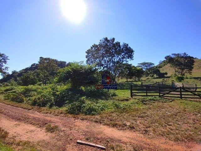 Sítio à venda, por R$ 2.150.000 - Centro - Alta Floresta D'Oeste/RO - Foto 5