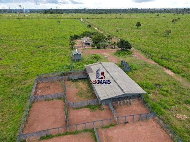 Fazenda à venda, por R$ 40.000.000 - Área Rural de Porto Velho - Porto Velho/RO - Foto 4