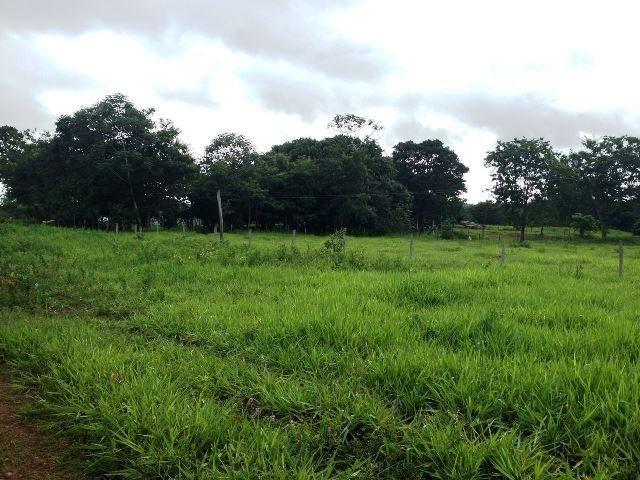 Fazenda 950 ha Rosário Oeste MT - Foto 9