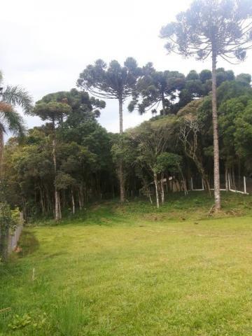 São José dos Pinhais - Chácara c/ 2328m² em condomínio fechado próx. BR 277 - Foto 5
