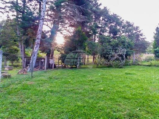 Chácara à venda em Área rural, Mandirituba cod:150401 - Foto 8