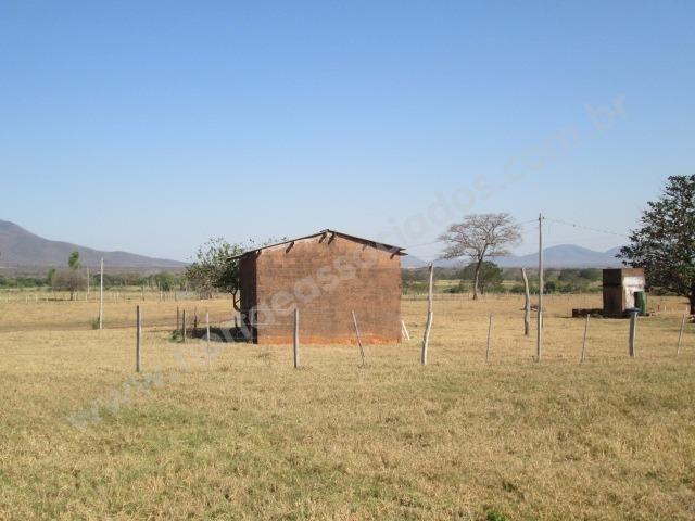 Fazenda com 881 hectares em Corumbá-MS para agricultura e pecuária - Foto 7