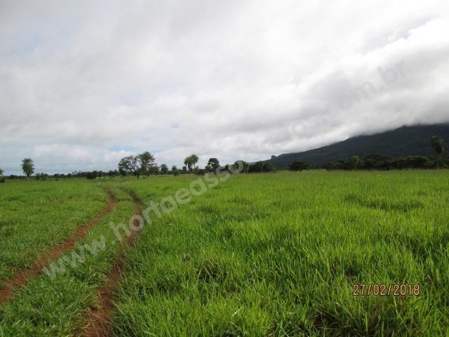 Fazenda com 881 hectares em Corumbá-MS para agricultura e pecuária - Foto 2