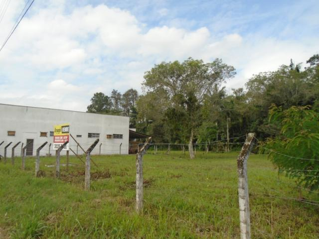 Terreno para alugar em Pirabeiraba, Joinville cod:00444.010 - Foto 4