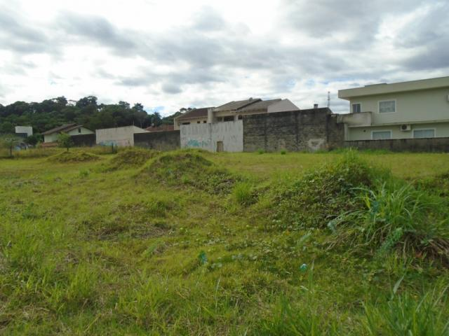 Terreno para alugar em Santa catarina, Joinville cod:08122.002 - Foto 5