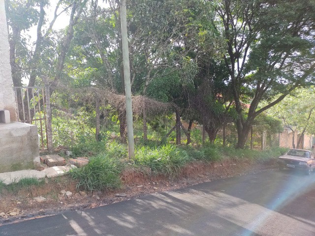 Lote 360m ² Plano. Rua asfaltada com água a luz - Foto 2