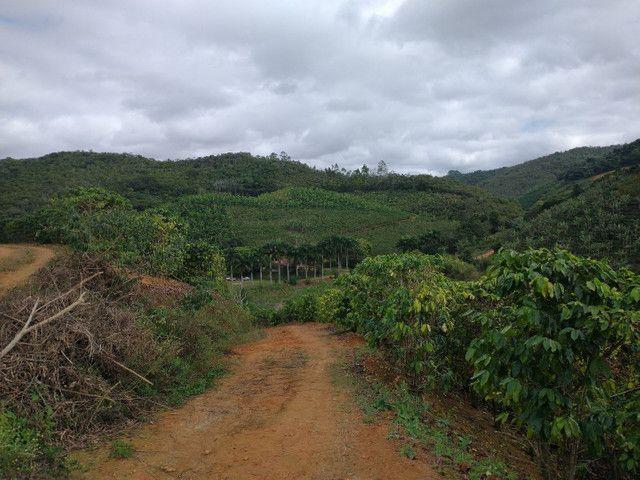 Propriedades 9 alqueires Araguaia - Foto 3
