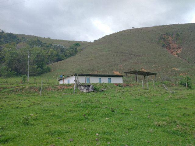 Fazendinha 74 hequitares região de Paraju - Foto 14