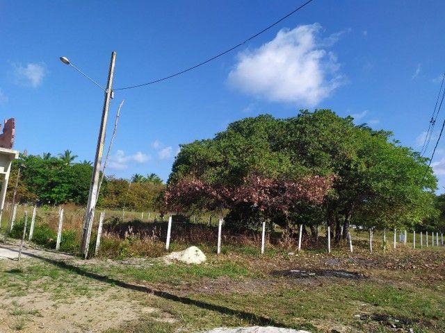 Terreno em praia carne de vaca - Foto 4