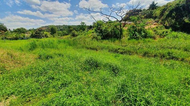 Vendo ótimo Terreno para Sítio- Passarinho - Foto 4