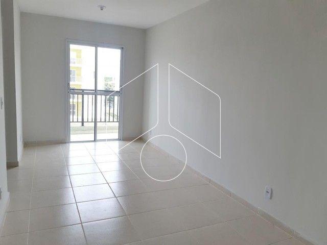 Apartamento para alugar com 2 dormitórios cod:L11259