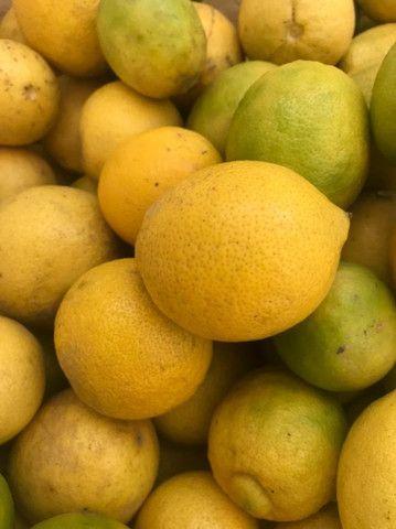 Frutas Congeladas e naturais