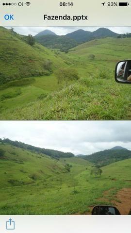 Venda-se está fazenda de 323 Alqueires no Estado de minas Gerais/MG - Foto 7