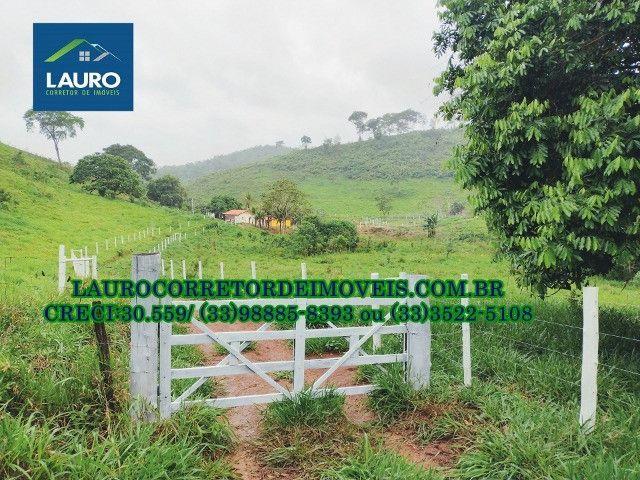 Fazenda com 20 alqueires (96,8 ha.) a 20 km de Teófilo Otoni -MG - Foto 10