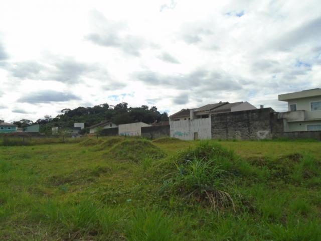 Terreno para alugar em Santa catarina, Joinville cod:08122.002 - Foto 8