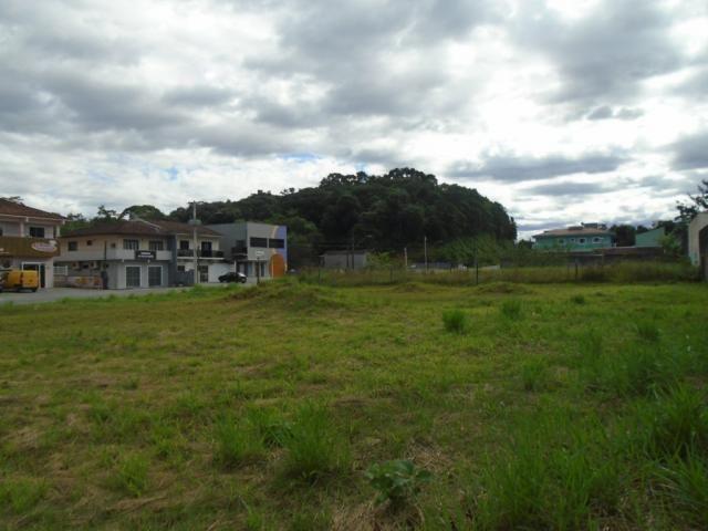 Terreno para alugar em Santa catarina, Joinville cod:08122.001 - Foto 5