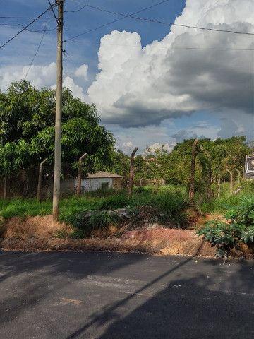 Lote 360m ² Plano. Rua asfaltada com água a luz - Foto 7