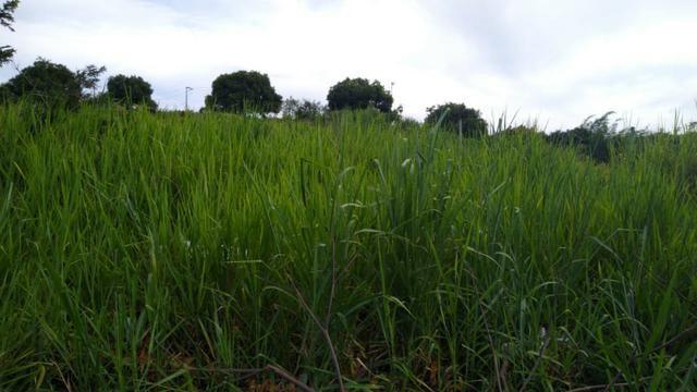 Oportunidade terreno no Caju - Maricá - Foto 2