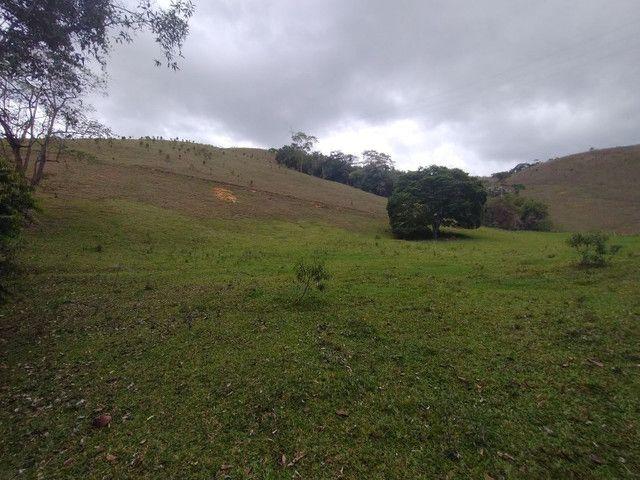 Fazendinha 74 hequitares região de Paraju - Foto 7