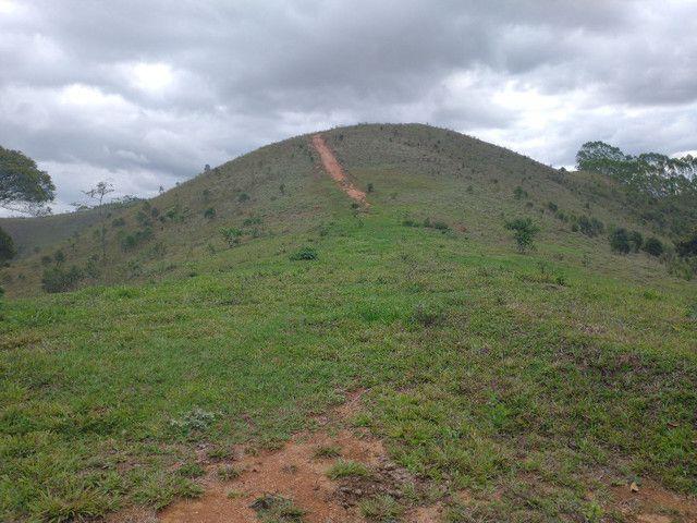 Fazendinha 74 hequitares região de Paraju - Foto 5