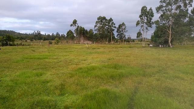 Velleda oferece 2 hectares, 6 açudes, piscicultura, moradia e etc 1km RS040 - Foto 9