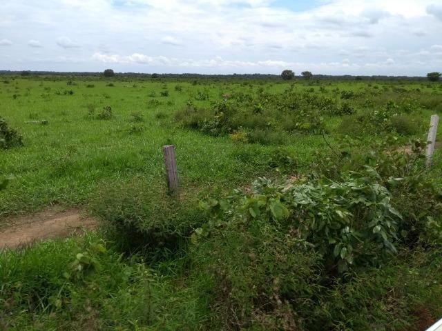 Fazenda 9.900 ha São Felix Do Araguaia - Foto 13