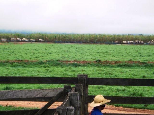 Fazenda 21.100 ha Diamantino MT - Foto 2