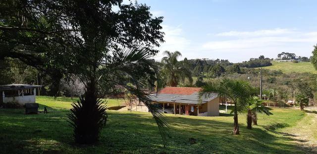 Vendo ou Troco Chácara em Contenda - 3.600 m2 - Foto 10