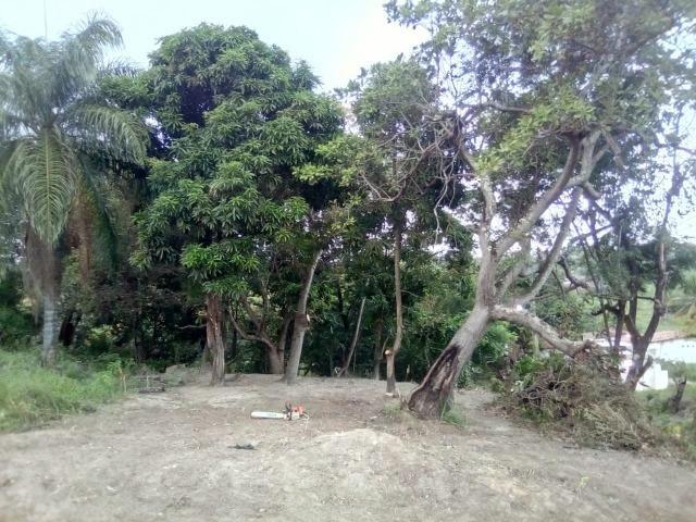 Terreno no pontal da ilha - Foto 2