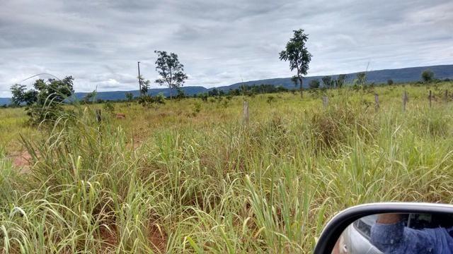 Vendo Fazenda com 1.523 Hectares na região do Manso - Foto 3