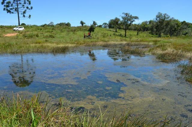 Oportunidade Produtor Rural Terreno em Bela Vista do Toldo - Foto 4