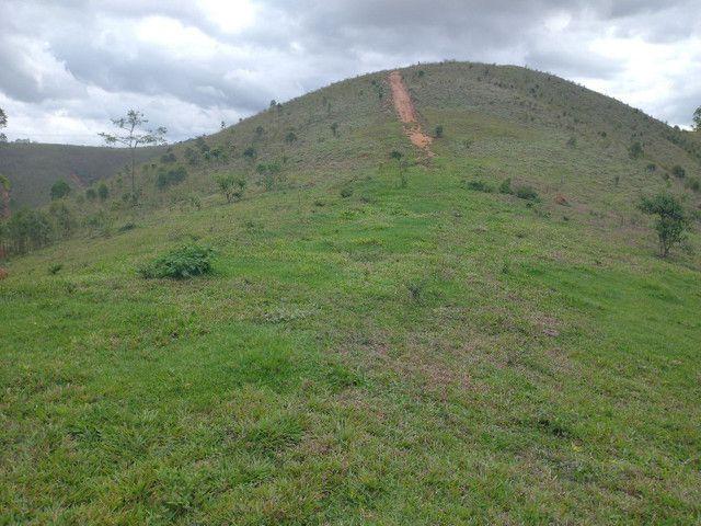 Fazendinha 74 hequitares região de Paraju - Foto 12