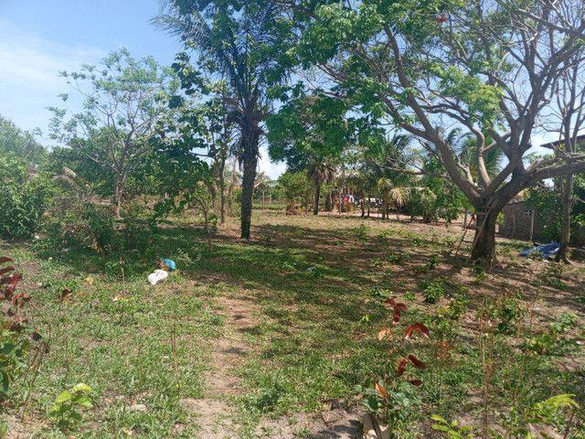 Terreno no panaquatira valor 15 mil  - Foto 6