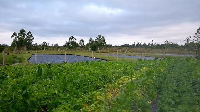 Velleda oferece 2 hectares, 6 açudes, piscicultura, moradia e etc 1km RS040 - Foto 6