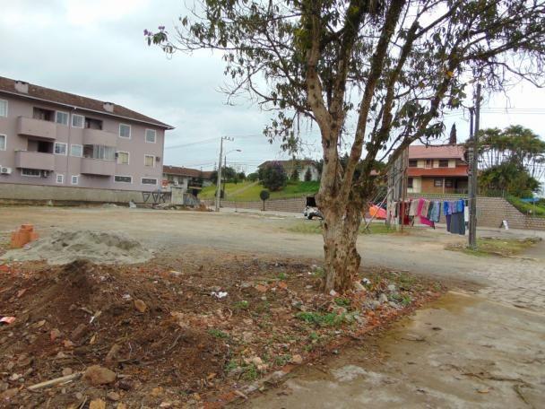 Terreno para alugar em Pirabeiraba, Joinville cod:06691.009 - Foto 3