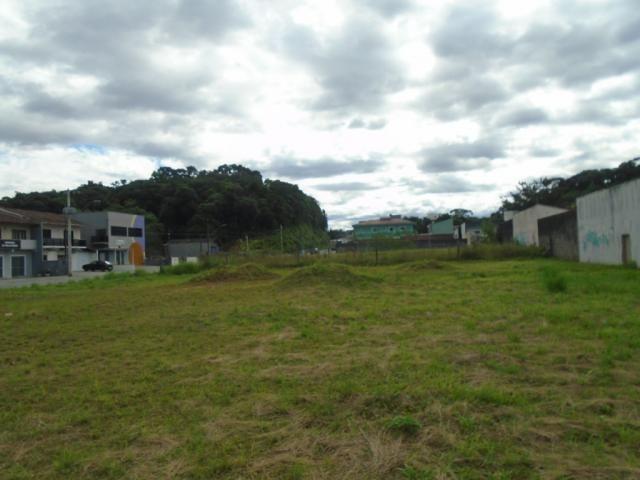 Terreno para alugar em Santa catarina, Joinville cod:08122.001 - Foto 3